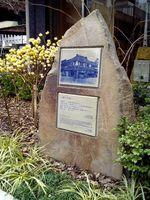 200603131